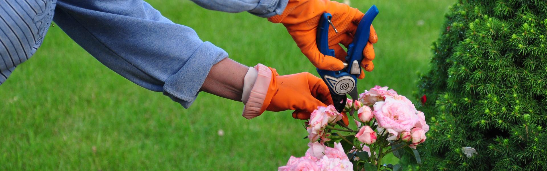 Groenonderhoud - Groenbedrijf Limburg