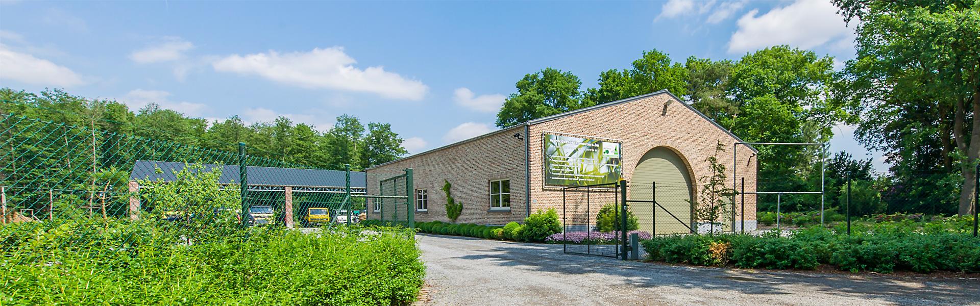 Boomstronken verwijderen - Groenbedrijf Limburg