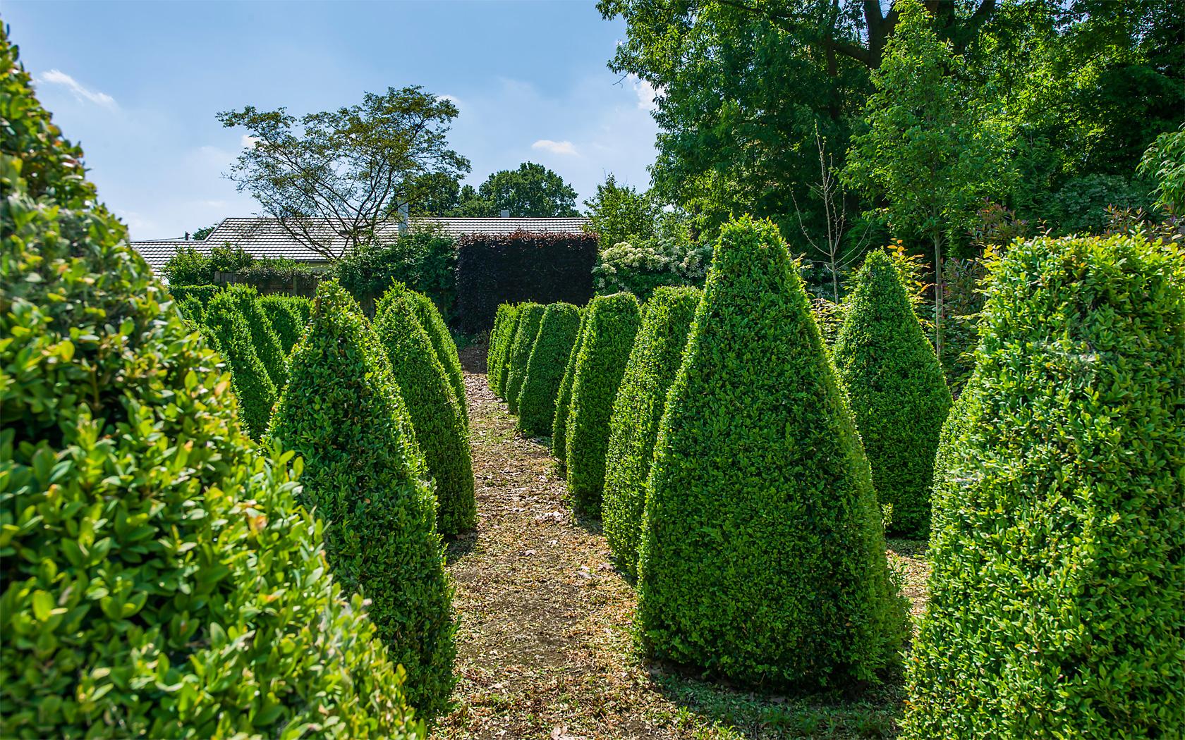 Stronken verwijderen - Groenbedrijf Limburg