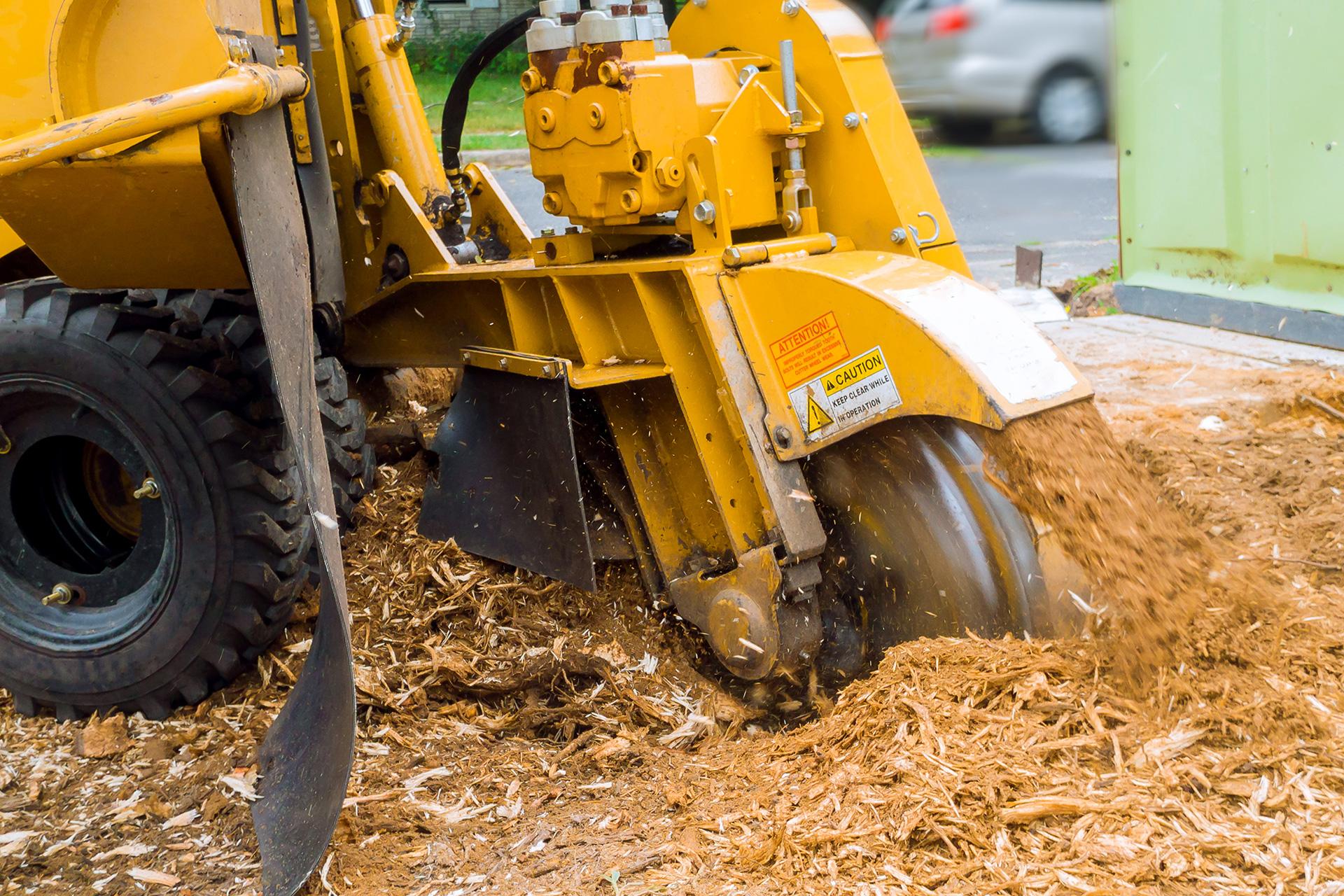 Uitfrezen van stronken - Groenbedrijf Limburg